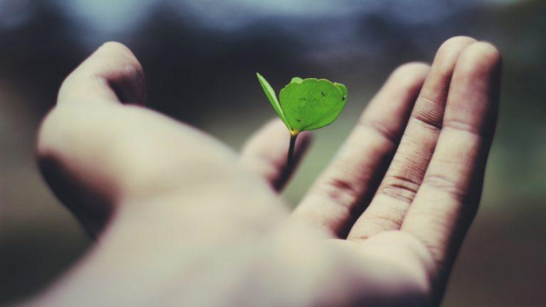 LIFE INSURANCE DEEP DIVE PART III – PROCESS
